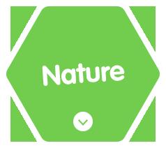 自然を愛する